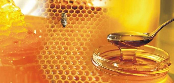 ελληνικό το καλύτερο μέλι στον κόσμο